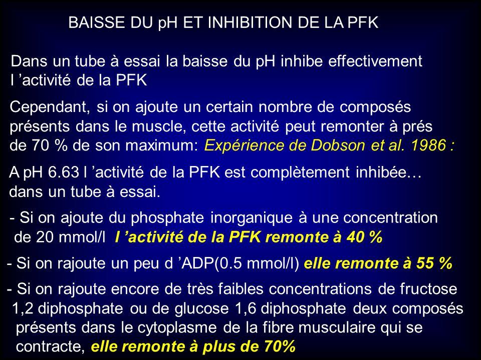 BAISSE DU pH ET INHIBITION DE LA PFK Dans un tube à essai la baisse du pH inhibe effectivement