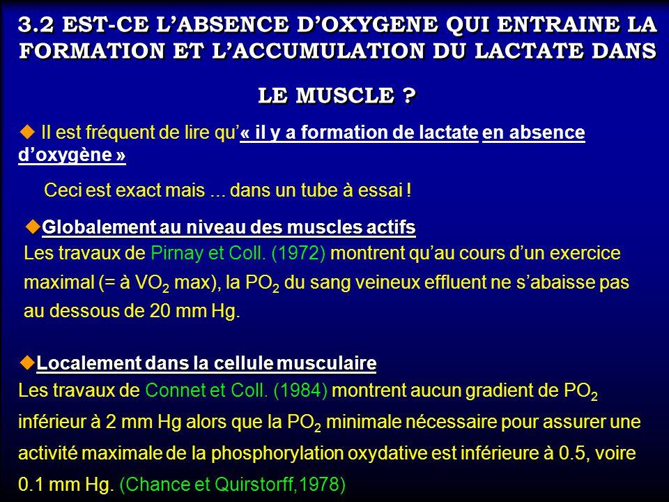 3.2 EST-CE L'ABSENCE D'OXYGENE QUI ENTRAINE LA FORMATION ET L'ACCUMULATION DU LACTATE DANS LE MUSCLE