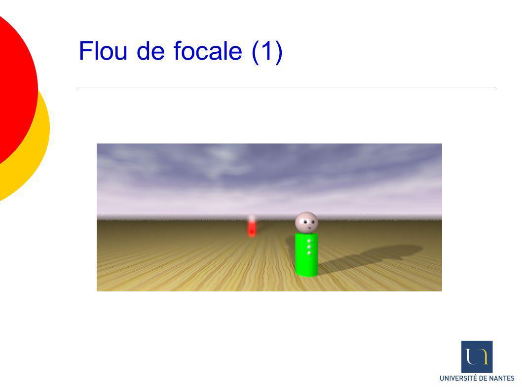 Flou de focale (1)
