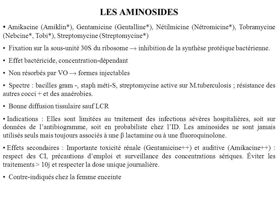 LES AMINOSIDES