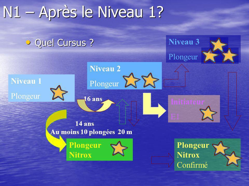 N1 – Après le Niveau 1 Quel Cursus Niveau 3 Plongeur Niveau 2