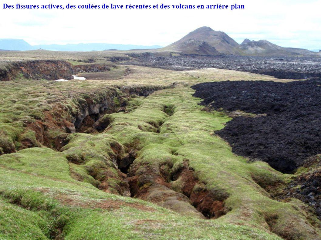 Des fissures actives, des coulées de lave récentes et des volcans en arrière-plan
