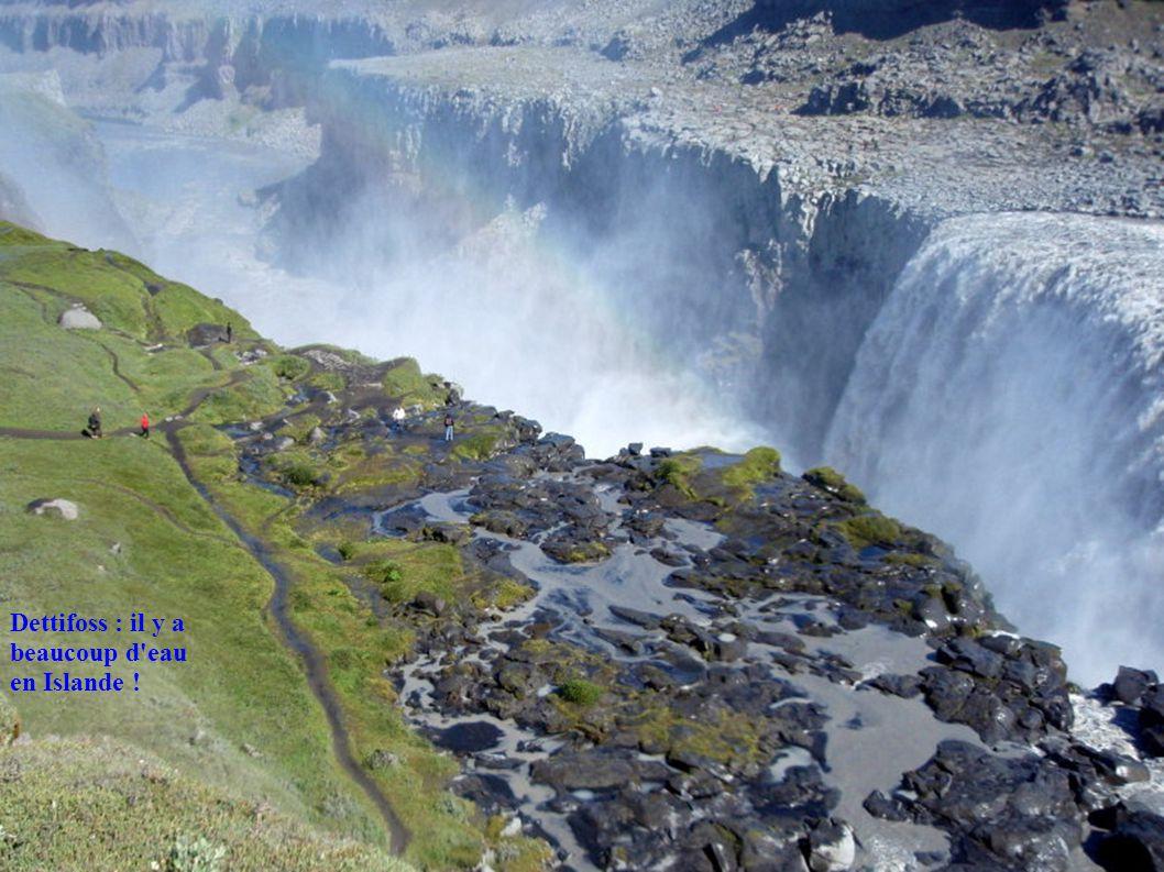 Dettifoss : il y a beaucoup d eau en Islande !