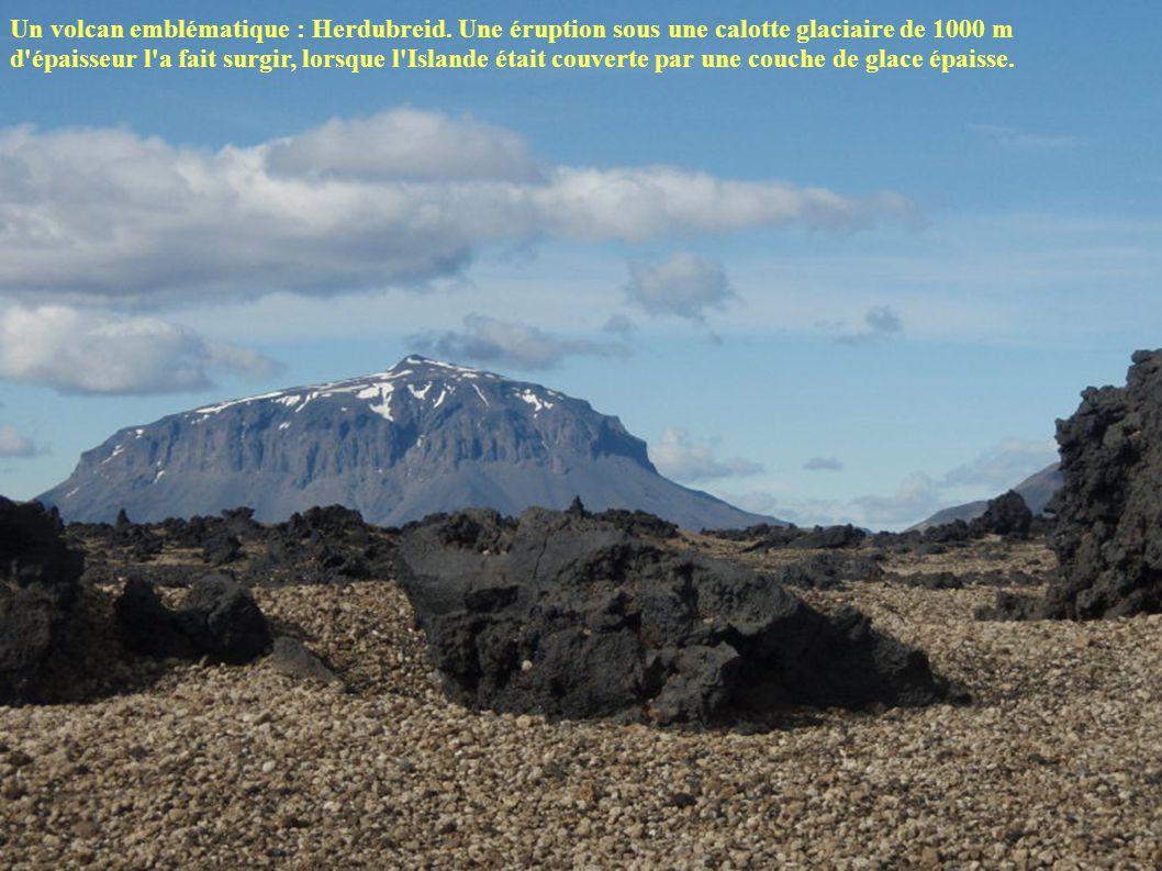 Un volcan emblématique : Herdubreid