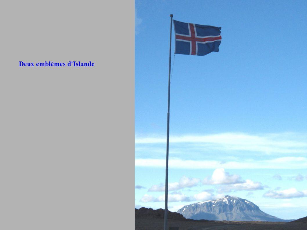 Deux emblèmes d Islande