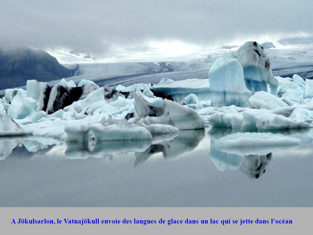 A Jökulsarlon, le Vatnajökull envoie des langues de glace dans un lac qui se jette dans l océan