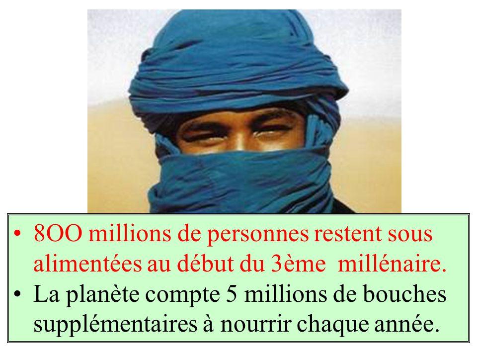 8OO millions de personnes restent sous alimentées au début du 3ème millénaire.