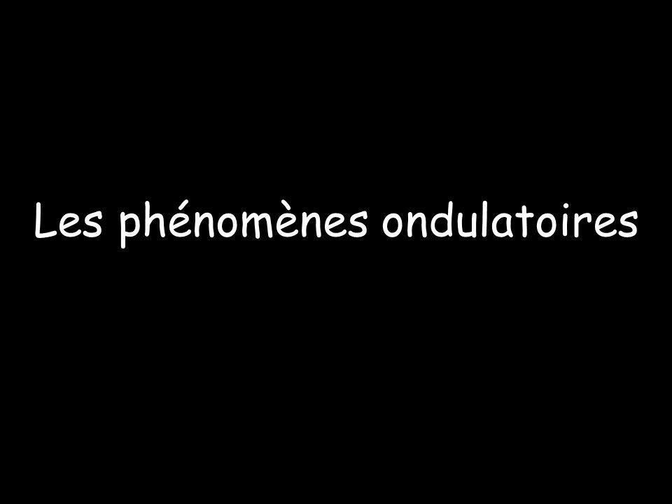 Les phénomènes ondulatoires