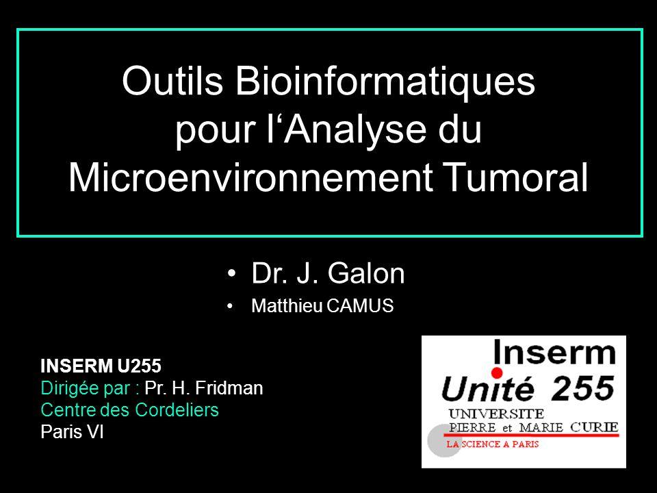Outils Bioinformatiques pour l'Analyse du Microenvironnement Tumoral