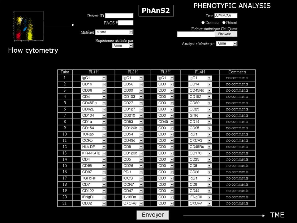 PHENOTYPIC ANALYSIS PhAnS2 Flow cytometry TME
