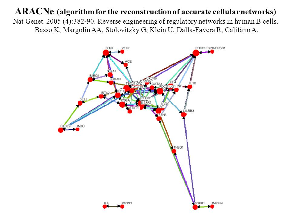 ARACNe (algorithm for the reconstruction of accurate cellular networks)