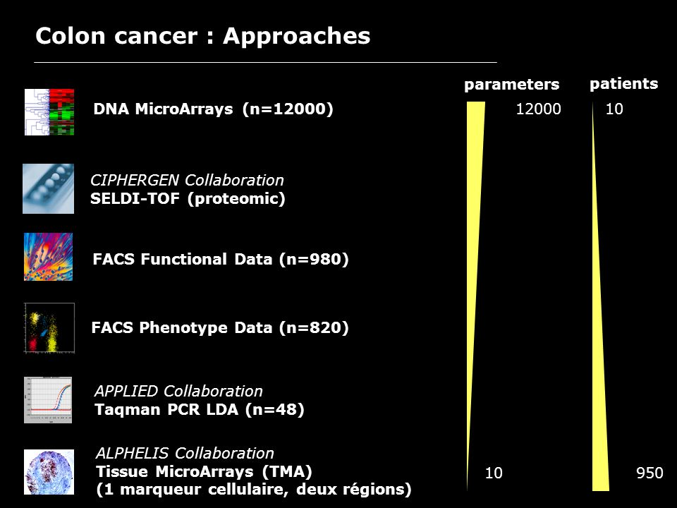 Colon cancer : Approaches