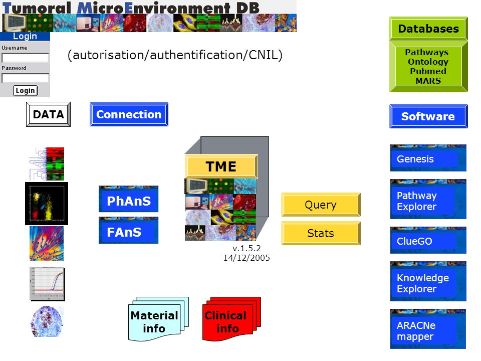TME (autorisation/authentification/CNIL) PhAnS FAnS Databases Query