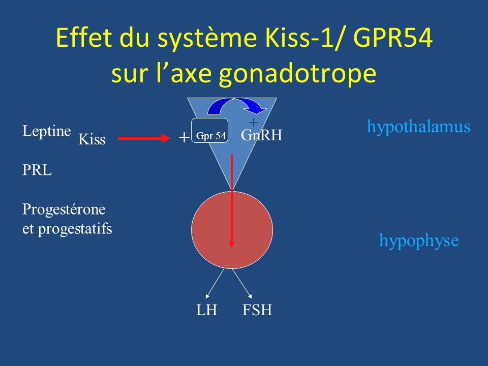 Effet du système Kiss-1/ GPR54 sur l'axe gonadotrope
