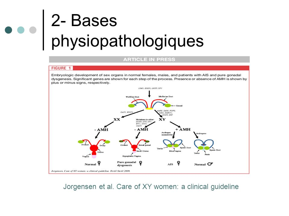 2- Bases physiopathologiques