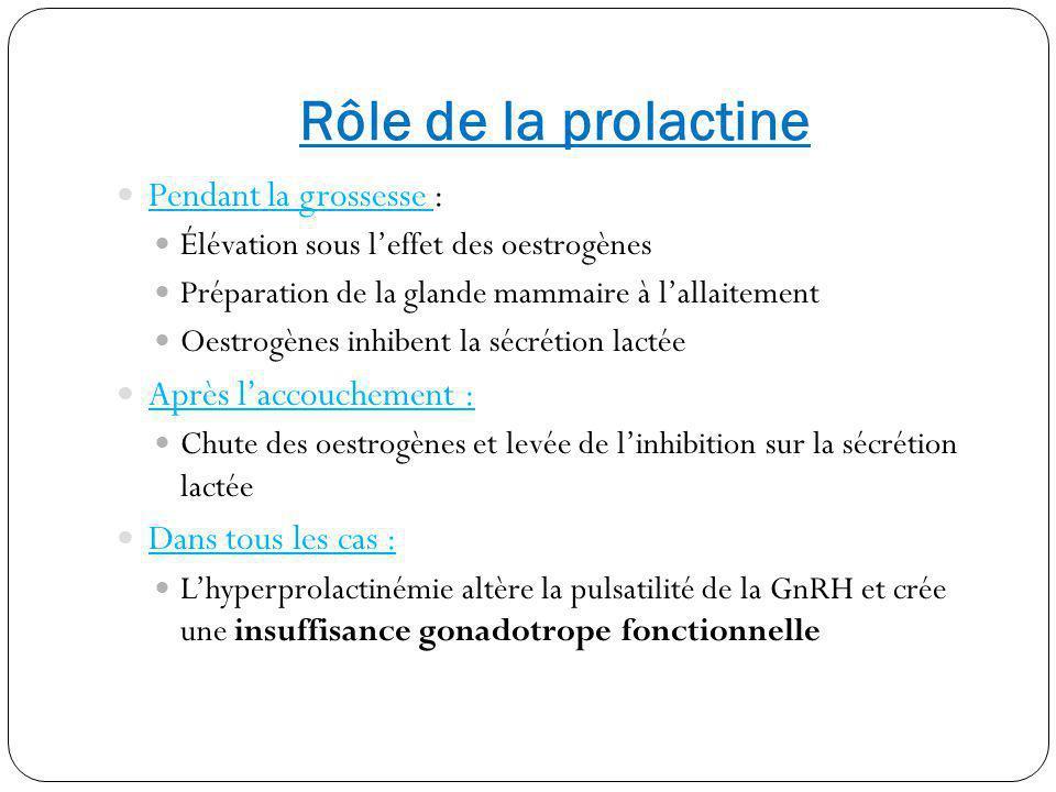Rôle de la prolactine Pendant la grossesse : Après l'accouchement :