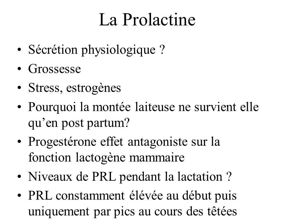 La Prolactine Sécrétion physiologique Grossesse Stress, estrogènes