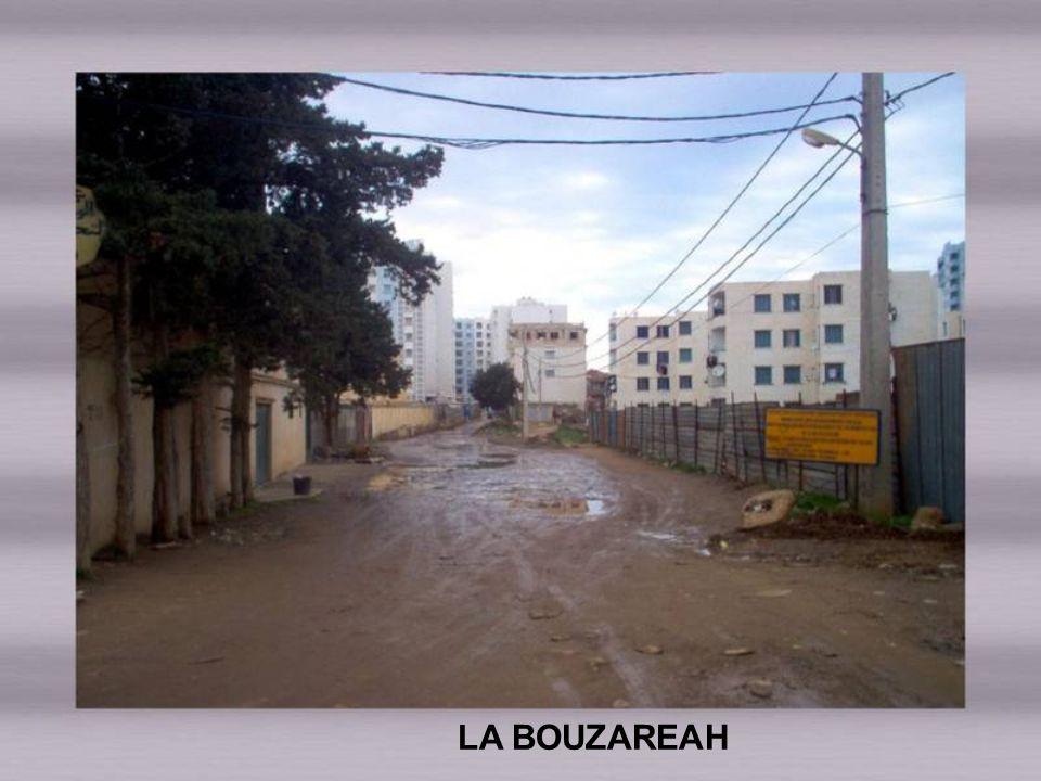 LA BOUZAREAH