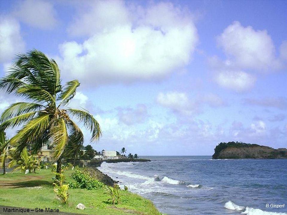 Bages (11) B.Gispert B.Gispert Martinique – Ste Marie