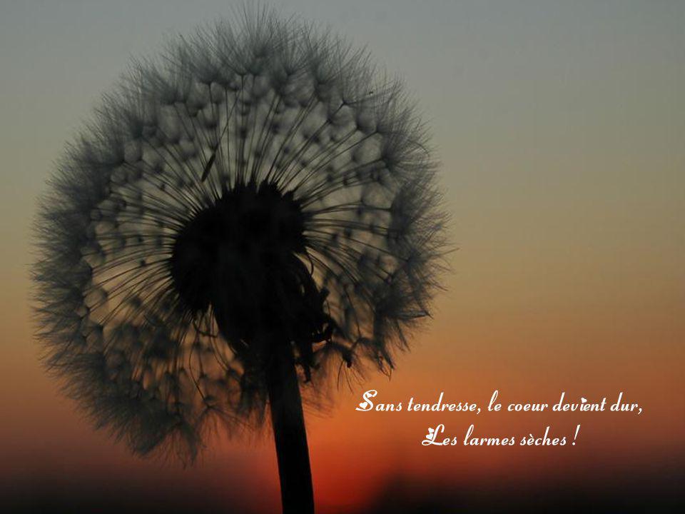 Sans tendresse, le coeur devient dur,