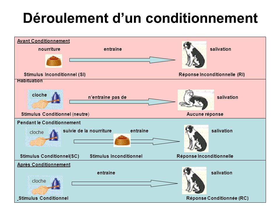Déroulement d'un conditionnement