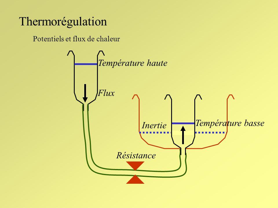 Thermorégulation Température haute Flux Température basse Inertie
