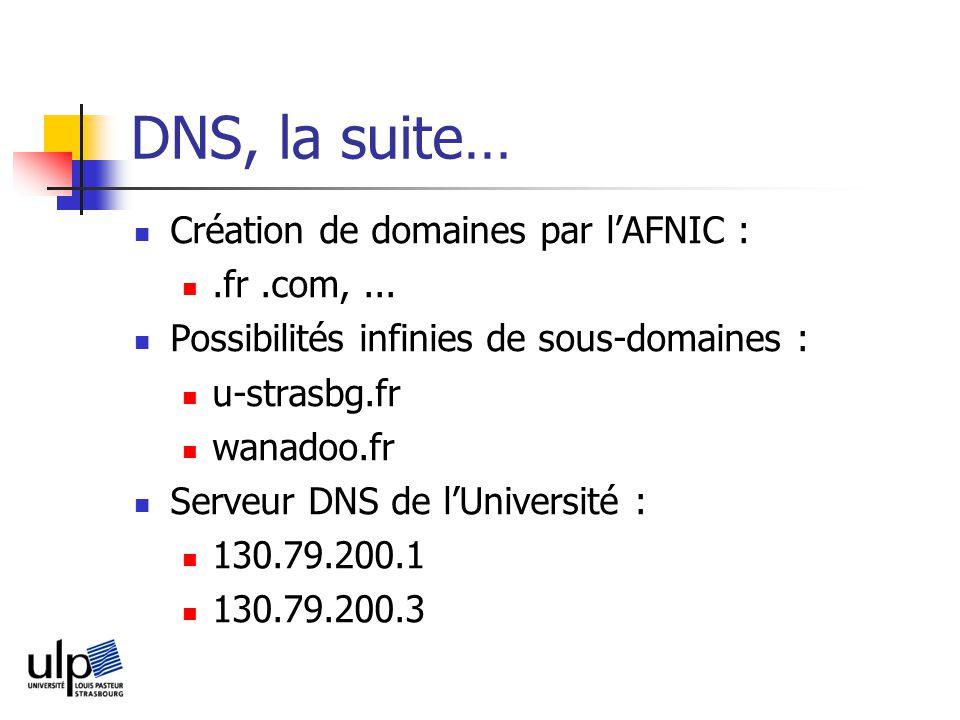 DNS, la suite… Création de domaines par l'AFNIC : .fr .com, ...