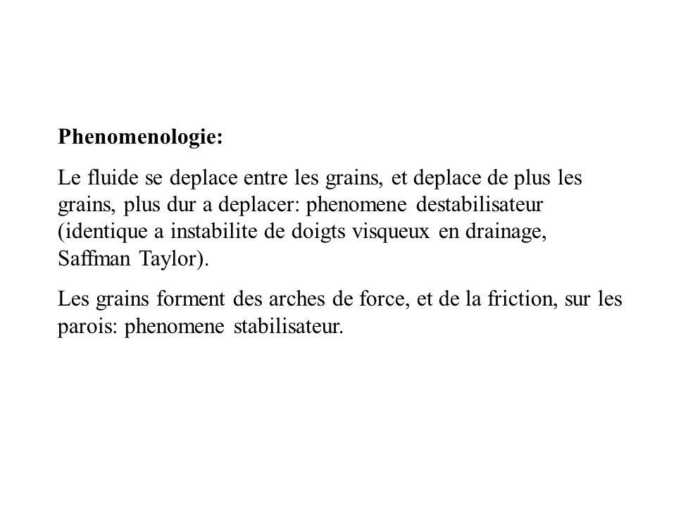 Phenomenologie: