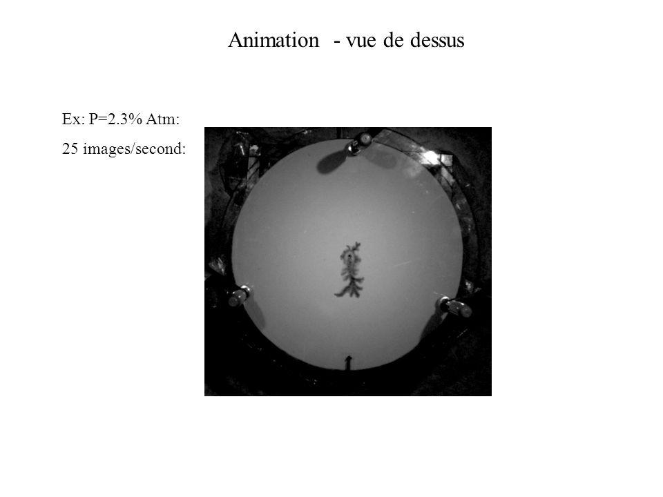 Animation - vue de dessus