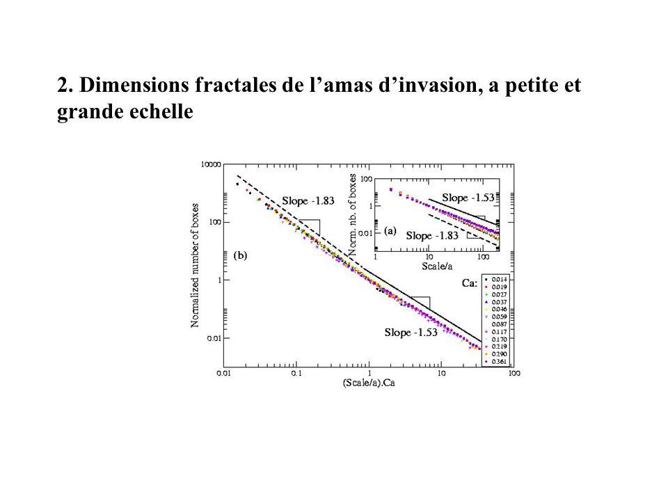 2. Dimensions fractales de l'amas d'invasion, a petite et grande echelle