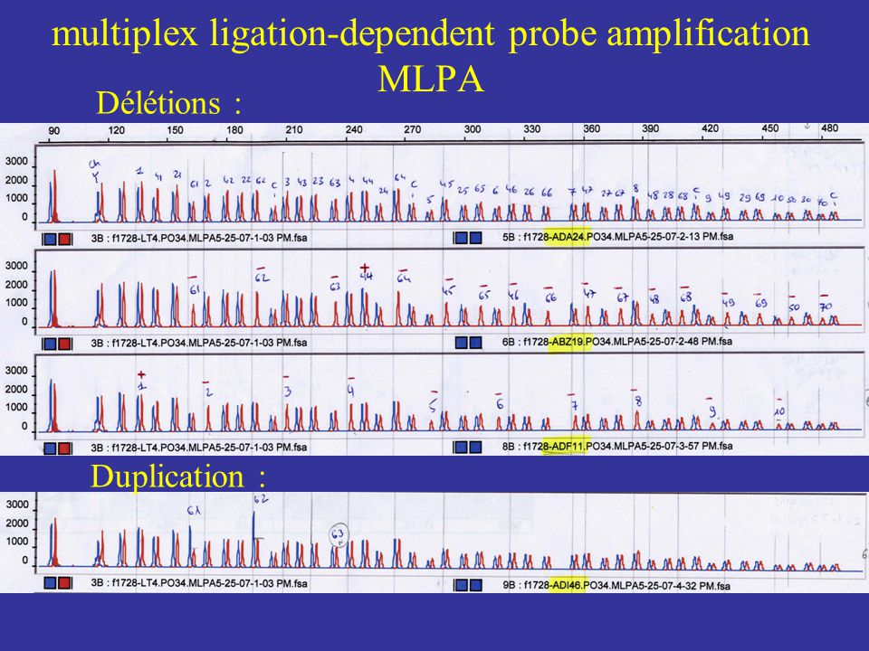 multiplex ligation-dependent probe amplification MLPA