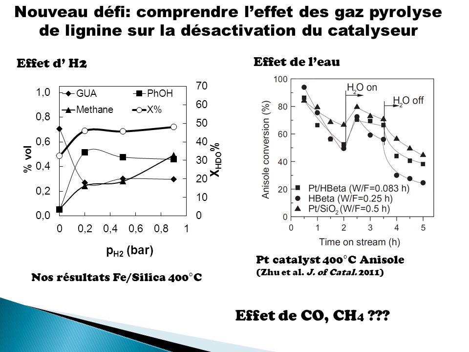 Nouveau défi: comprendre l'effet des gaz pyrolyse de lignine sur la désactivation du catalyseur