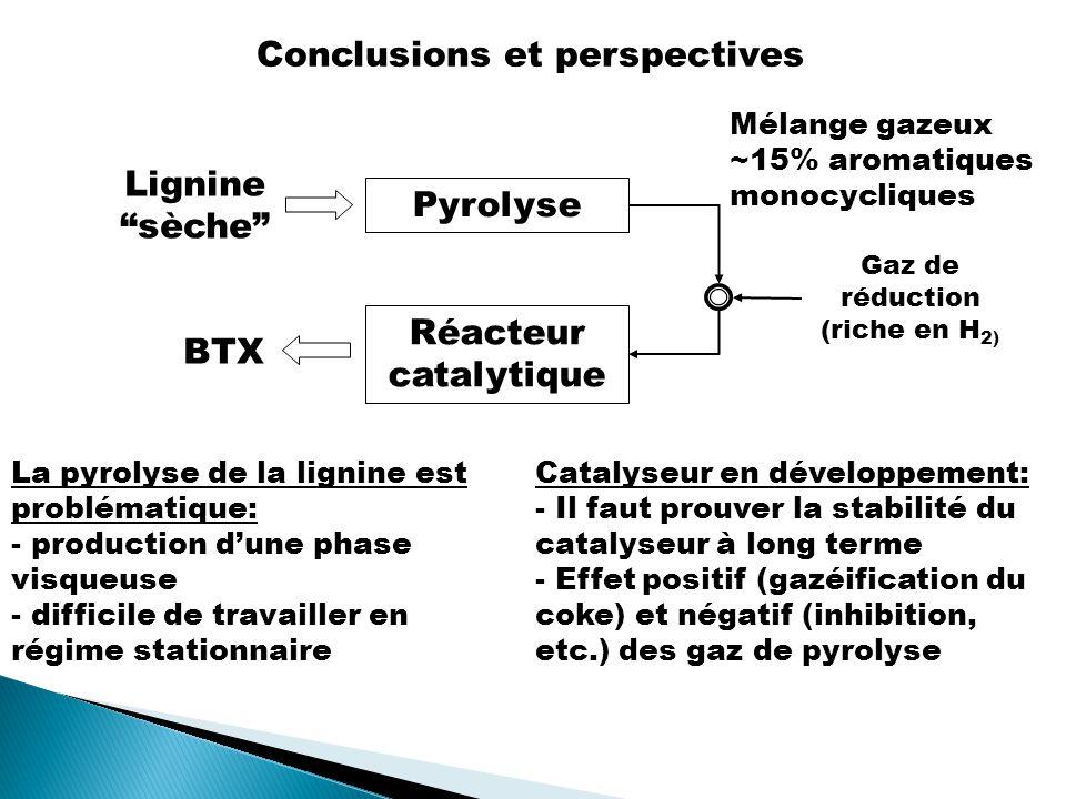 Pyrolyse Réacteur catalytique