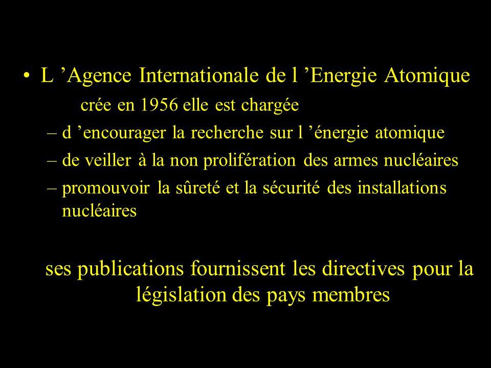 L 'Agence Internationale de l 'Energie Atomique