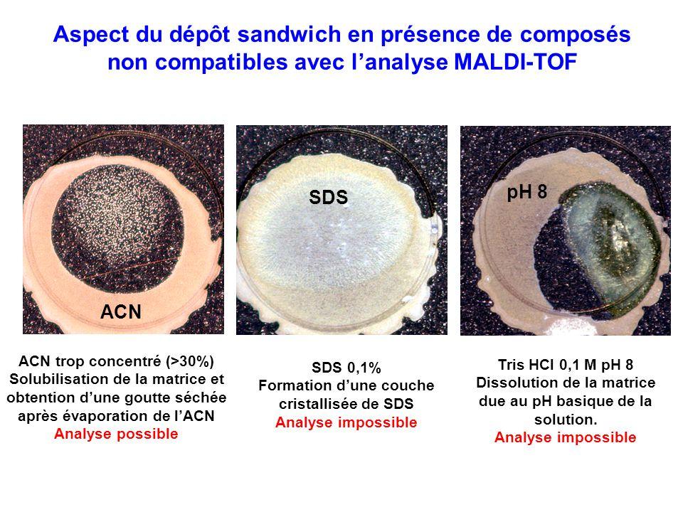 Aspect du dépôt sandwich en présence de composés non compatibles avec l'analyse MALDI-TOF