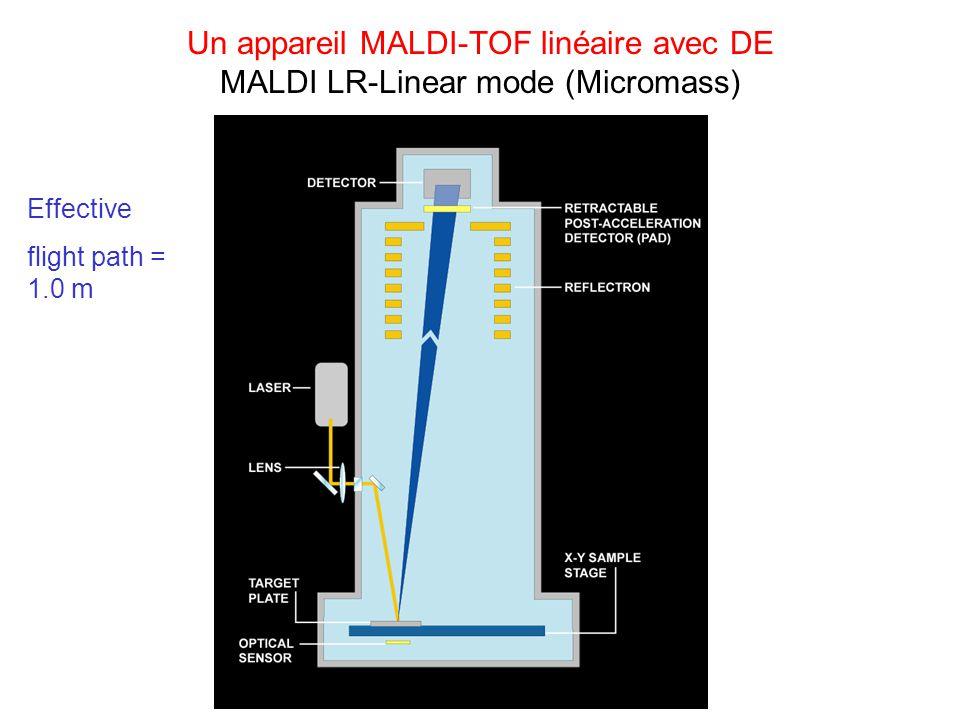 Un appareil MALDI-TOF linéaire avec DE MALDI LR-Linear mode (Micromass)