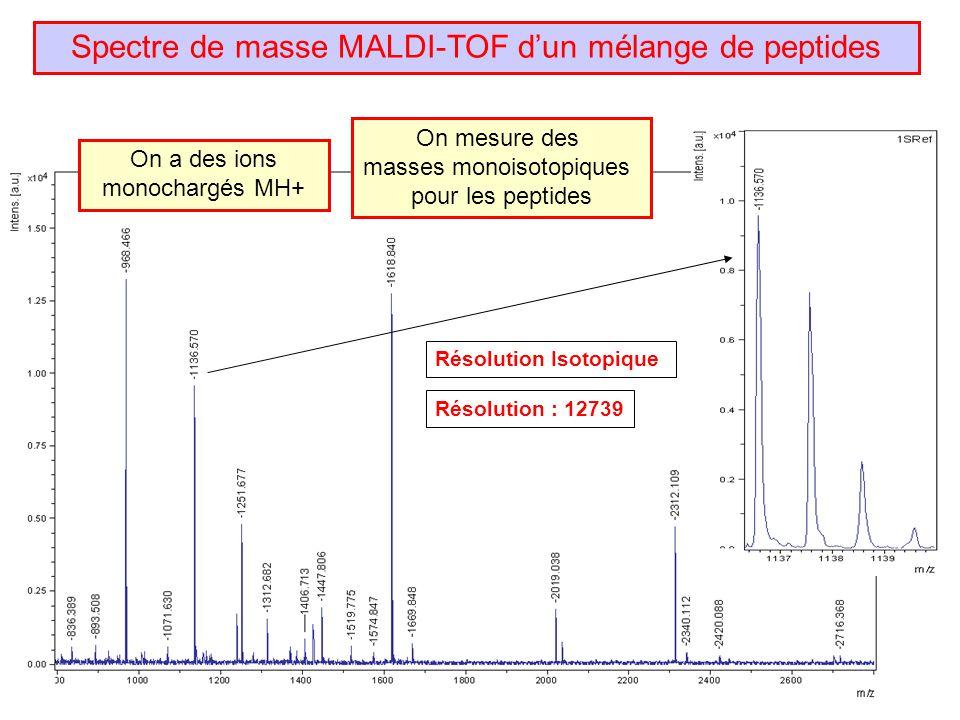 Spectre de masse MALDI-TOF d'un mélange de peptides