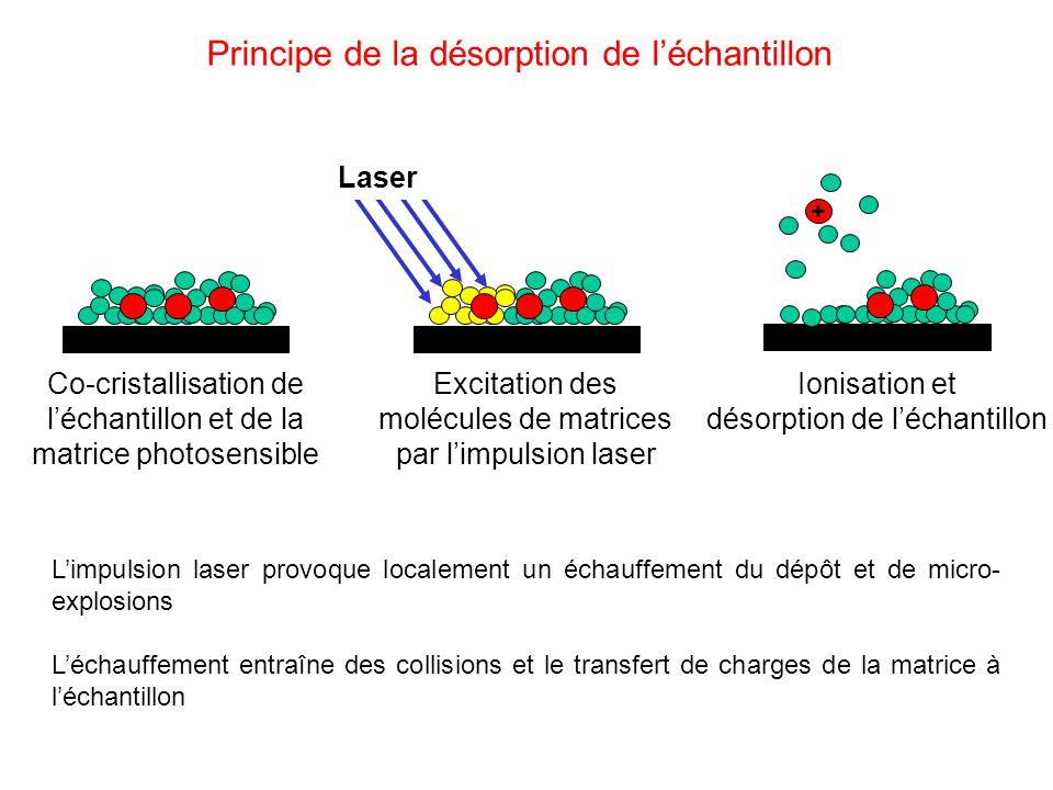 Principe de la désorption de l'échantillon