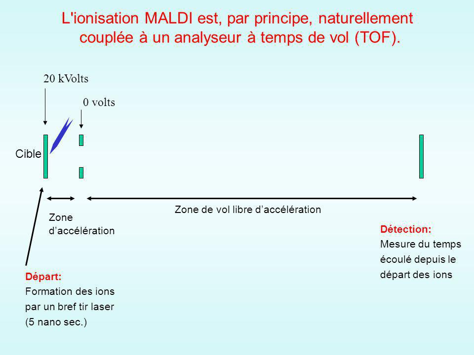 L ionisation MALDI est, par principe, naturellement
