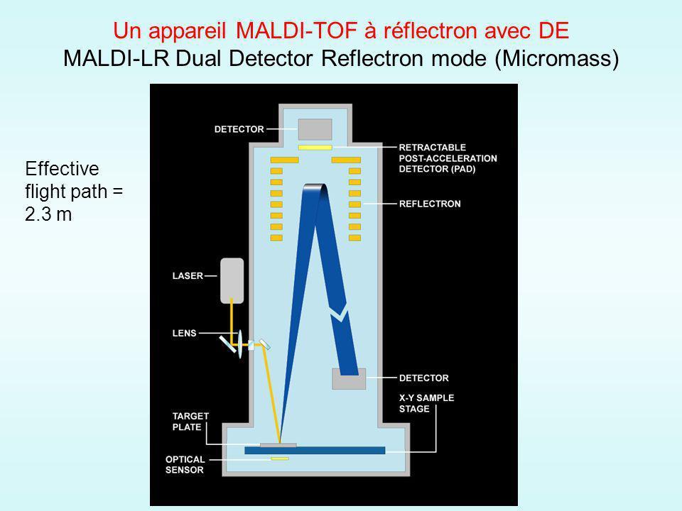 Un appareil MALDI-TOF à réflectron avec DE MALDI-LR Dual Detector Reflectron mode (Micromass)