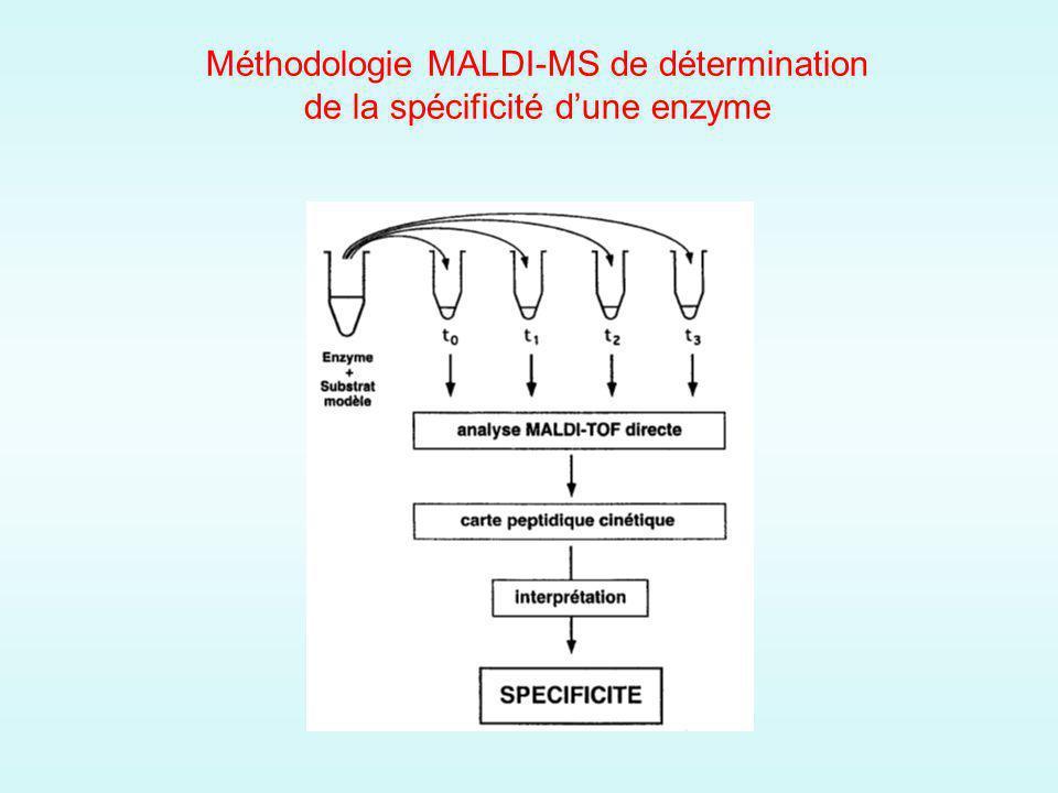 Méthodologie MALDI-MS de détermination de la spécificité d'une enzyme