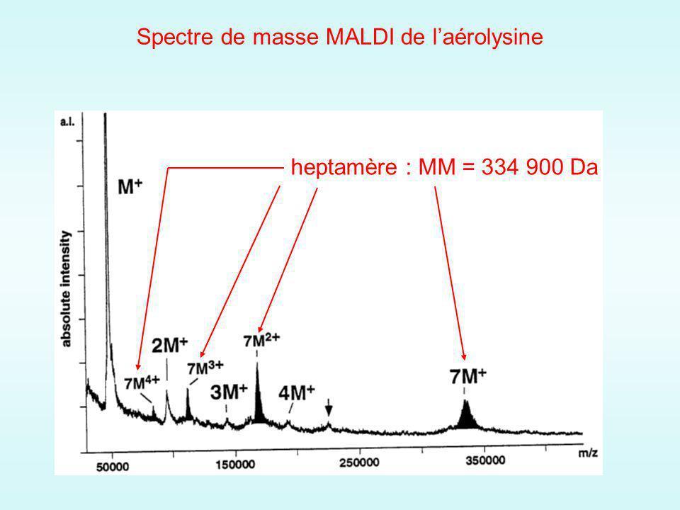 Spectre de masse MALDI de l'aérolysine