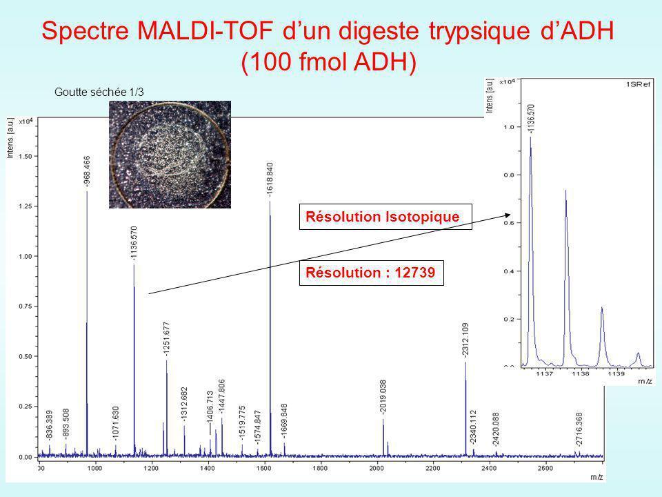 Spectre MALDI-TOF d'un digeste trypsique d'ADH (100 fmol ADH)