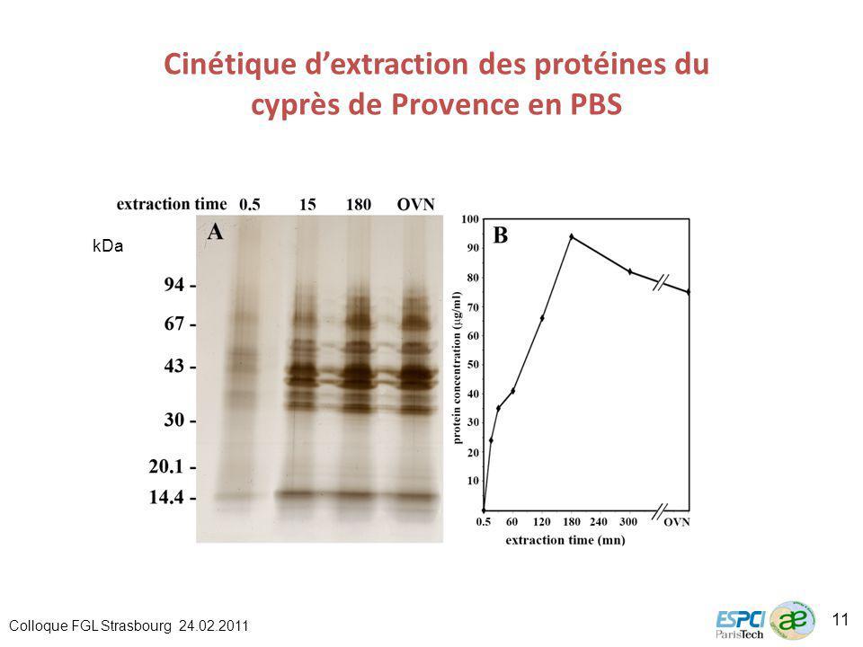 Cinétique d'extraction des protéines du cyprès de Provence en PBS