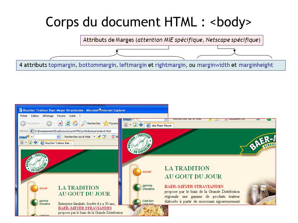 Corps du document HTML : <body>