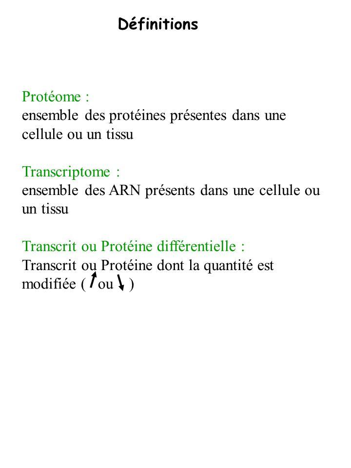 Définitions Protéome : ensemble des protéines présentes dans une cellule ou un tissu. Transcriptome :