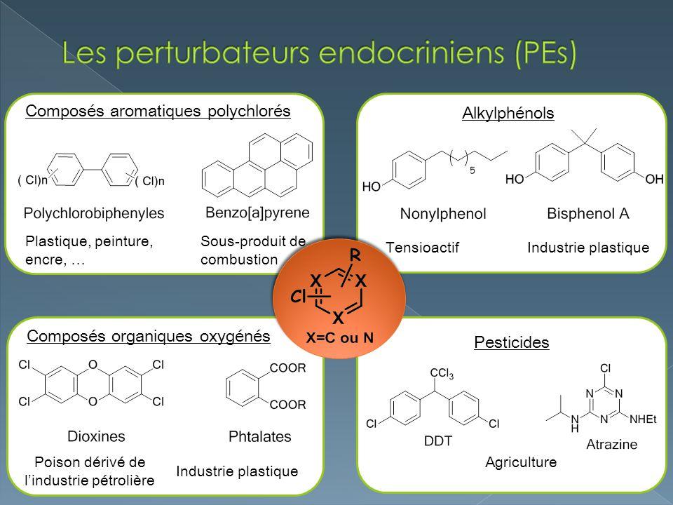 Les perturbateurs endocriniens (PEs)