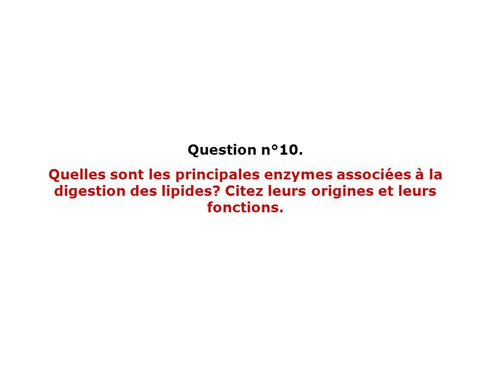 Question n°10. Quelles sont les principales enzymes associées à la digestion des lipides.