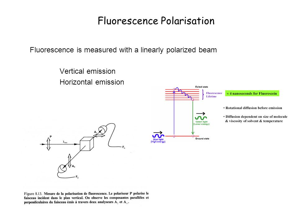 Fluorescence Polarisation