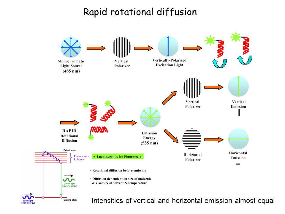 Rapid rotational diffusion
